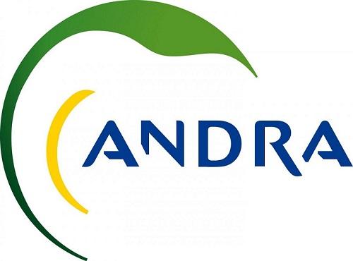 logo_andra2.jpg